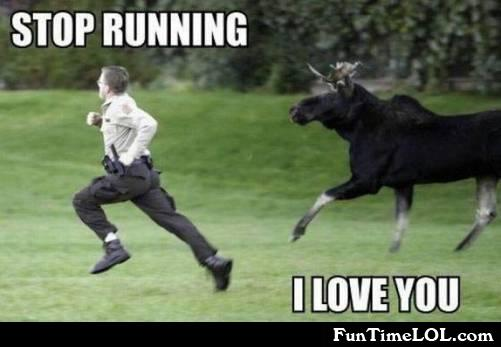 Stop running. I love you