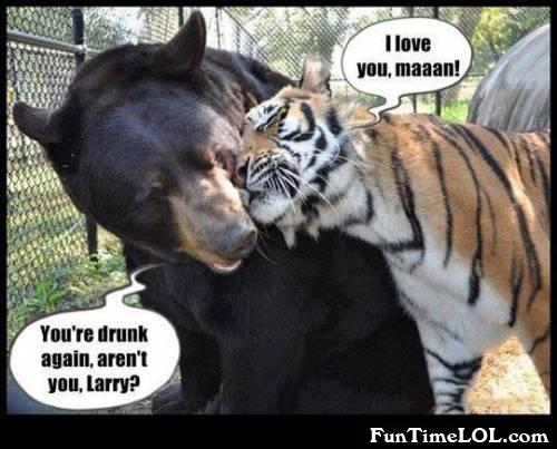 you're drunk again aren't you larry?
