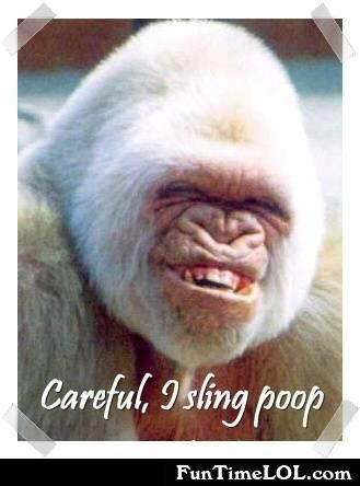 careful, i sling poop