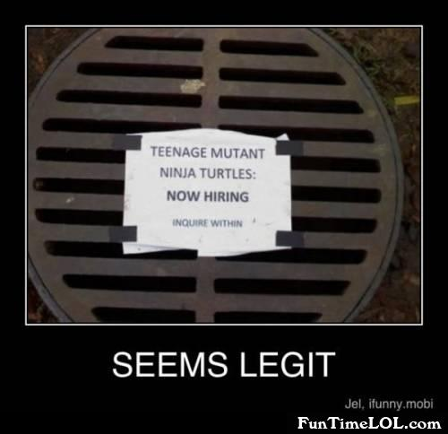 teenage mutant ninja turtles now hiring