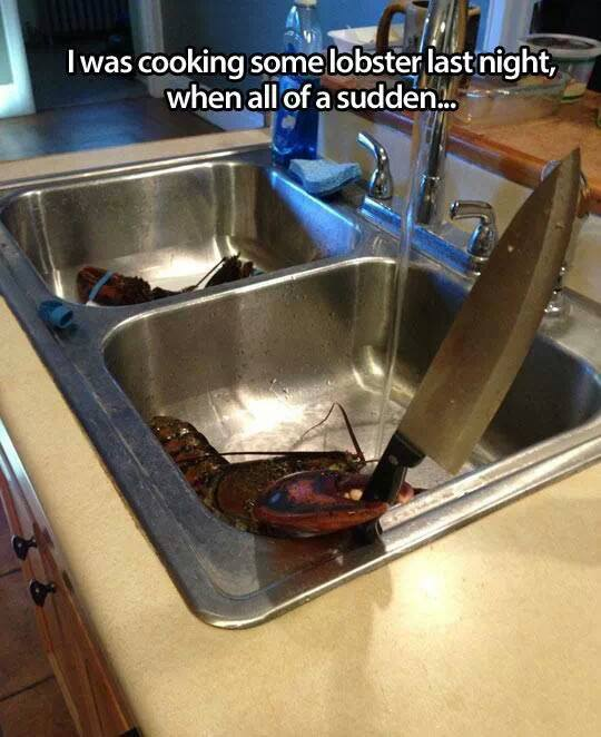 I was cooking some lobster last night, when all of a sudden