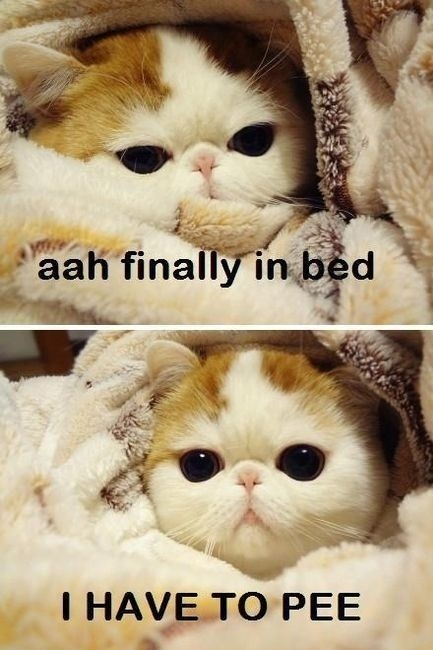 aah finally in bed