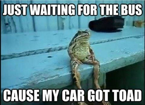 just waiting for the bus cause my car got toad
