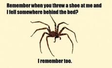Remember when you threw a shoe at me?