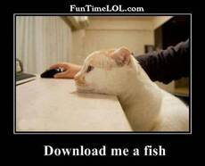Download me a fish