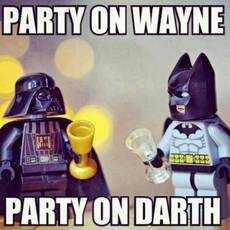 party on wayne, party on darth