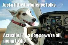 just a little turbulence folks